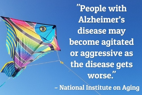 21 National Institute on Aging-min