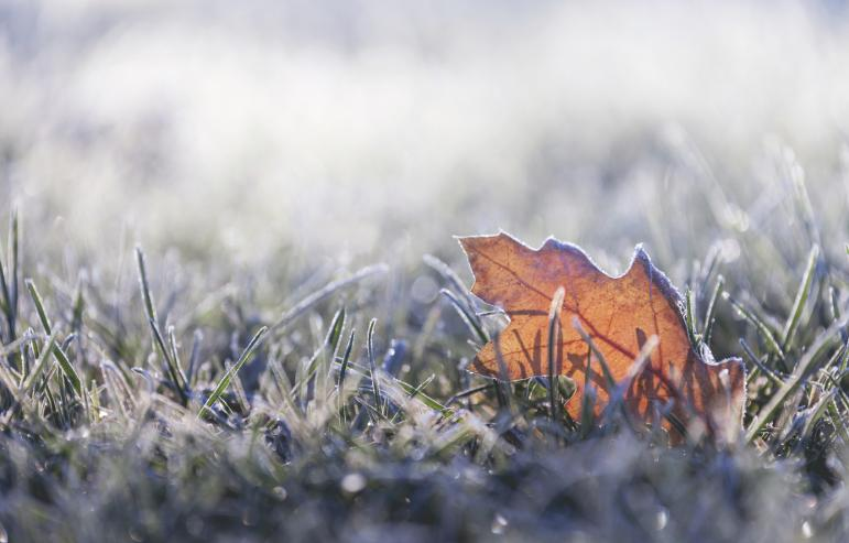 Caregiving Tips for Extreme Cold Weather