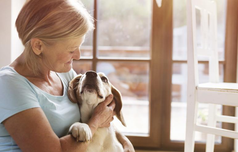 REMEMBERING CINDERELLA: HOW ELDERS CAN BENEFIT FROM PETS